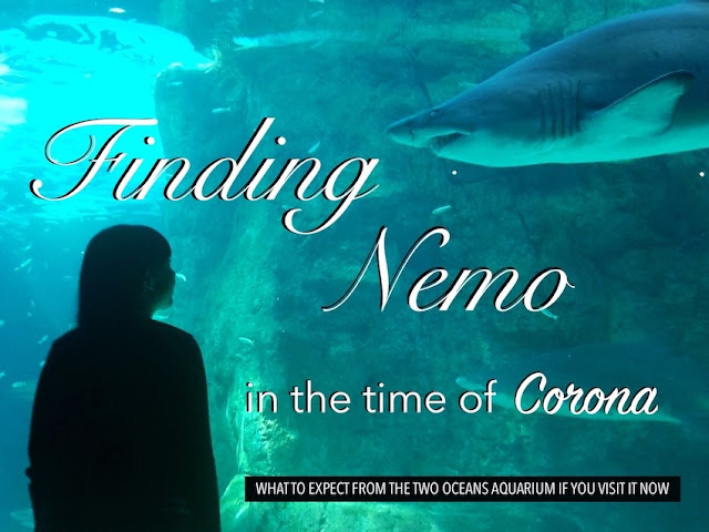 Girl looks at shark. Title page: A guide to the Two Oceans Aquarium, Cape Town during COVID-19
