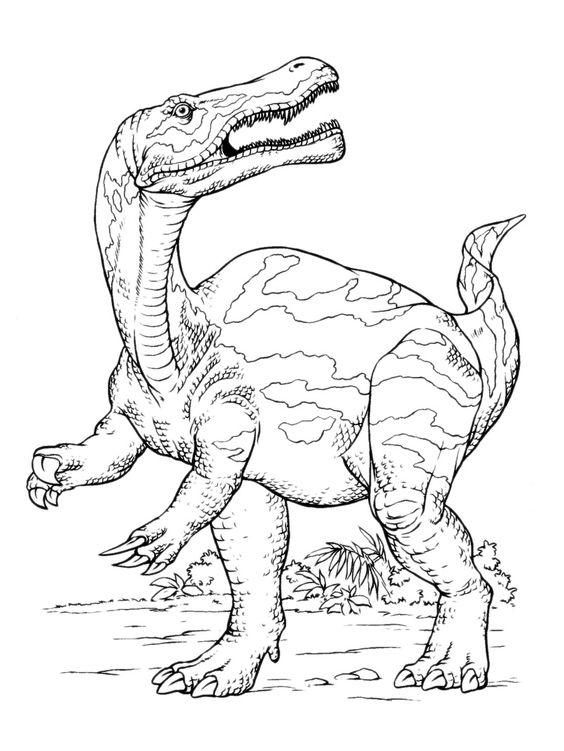 Tranh tô màu khủng long ăn thịt