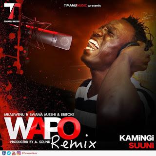Mkaliwenu-Ft.-Bwana Mjeshi & Ebitoke - Wapo (Remix Mp3).