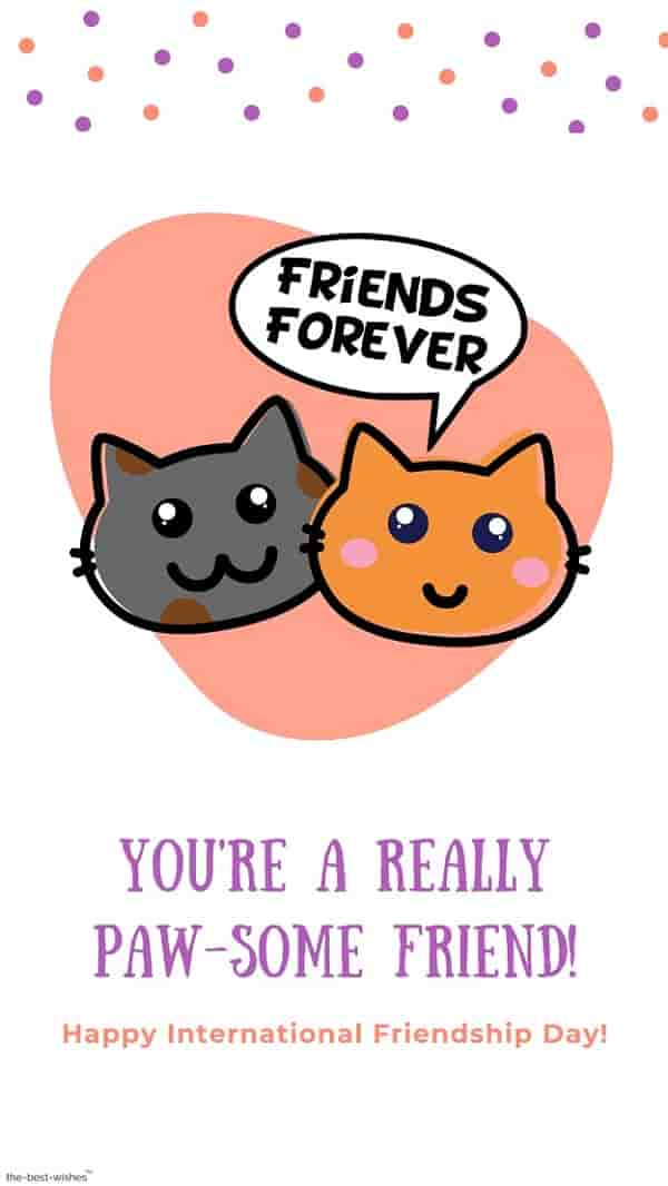 funny friendship day wishes