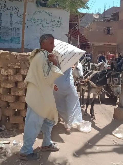 بعد تفاقم الآزمة توزيع الأسمدة  للمحاصيل الصيفية على مزارعي قرية الصلعا فى سوهاج