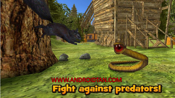 Forest Squirrel Simulator 3D Mod Apk Free