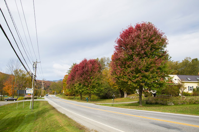Stowe e foliage