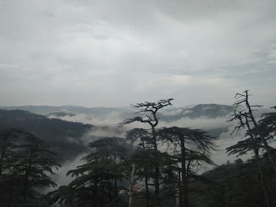 morning view Shimla
