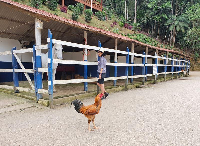 Hotel Fazenda China Park, Domingos Martins ES