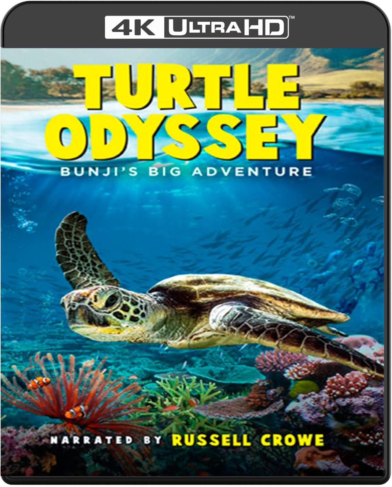 Turtle Odyssey [2018] [UHD] [2160p] [Latino]