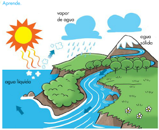 http://www.primerodecarlos.com/SEGUNDO_PRIMARIA/enero/tema2/actividades/cono/aprende_ciclo_agua/visor.swf