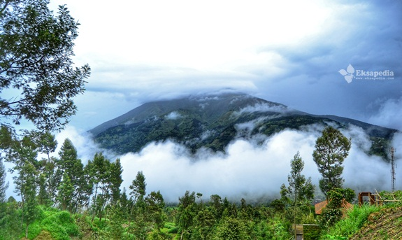 Gunung Merbabu Dari New Selo
