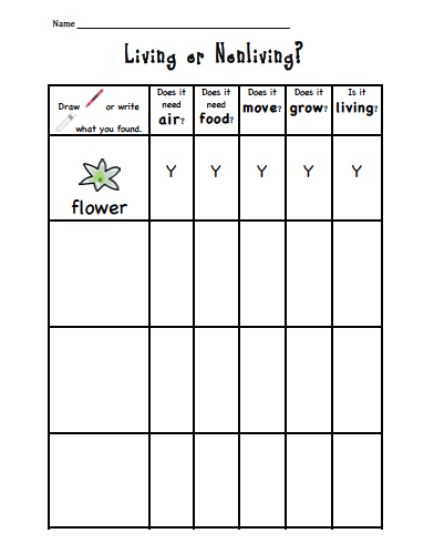Sarah's First Grade Snippets: Living or Nonliving