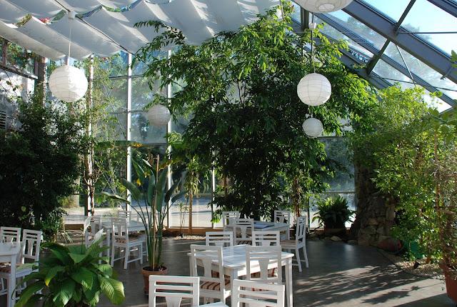 STAROPOLSKIE TROPIKI - HOTEL ARBITER RADOM