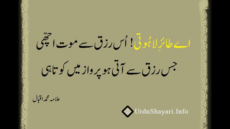 iqbal poetry on khudi - اے طائر لاہوتی اس رزق سے موت اچھی