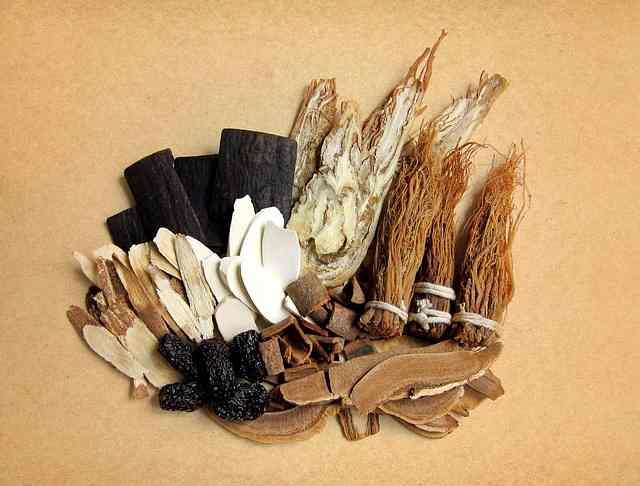 101 Obat Tradisional Warisan Indatu Aceh