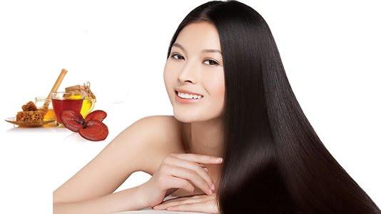 nấm linh chi chữa rụng tóc