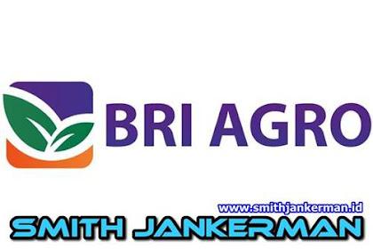 Lowongan Kerja Air Molek PT. Bank BRI Agroniaga Januari 2018