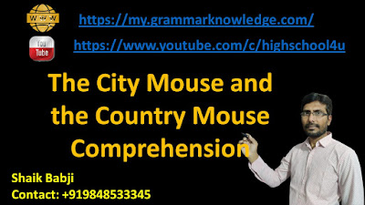 The City Mouse and the Country Mouse Comprehension