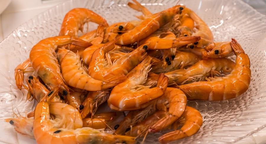 The sea food diet