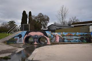 Albury Street Art | Waites Park Bird Watching mural by Kade Sarte