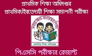 PSC Result 2018 by Teletalk - dperesult.teletalk.com.bd