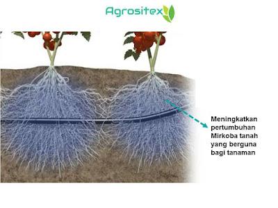 Meningkatkan Pertumbuhan Mikroba Tanah