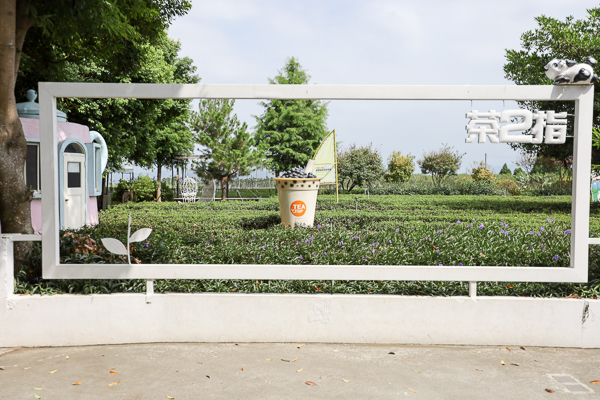 南投茶二指故事館適合網美拍照打卡和親子景點,放假有空來走走