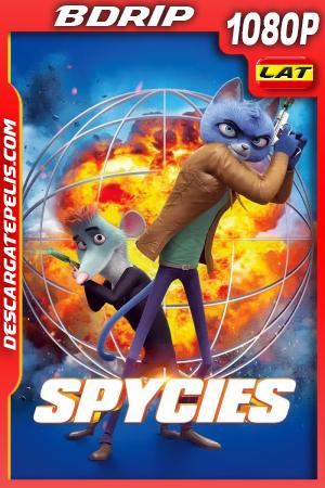 Spycies (2020) 1080P BDRIP Latino – Ingles