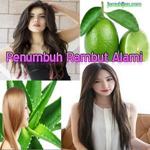 penumbuh rambut alami, sehat alami, jamu hijau, life insurance