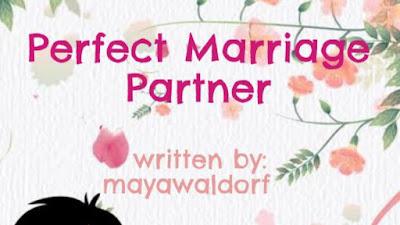 Novel perfect marriage partner