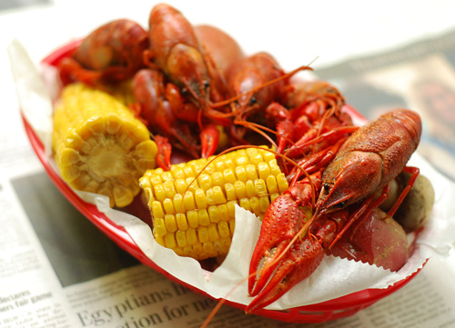 crawfish, mudbugs, crayfish, cajun, cajun boil,