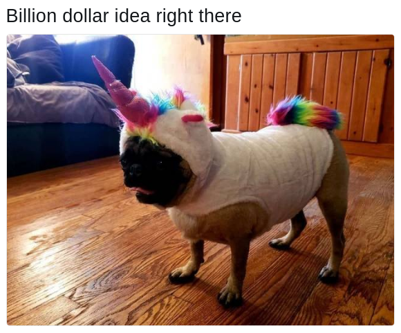 pug life unicorn costume dog meme