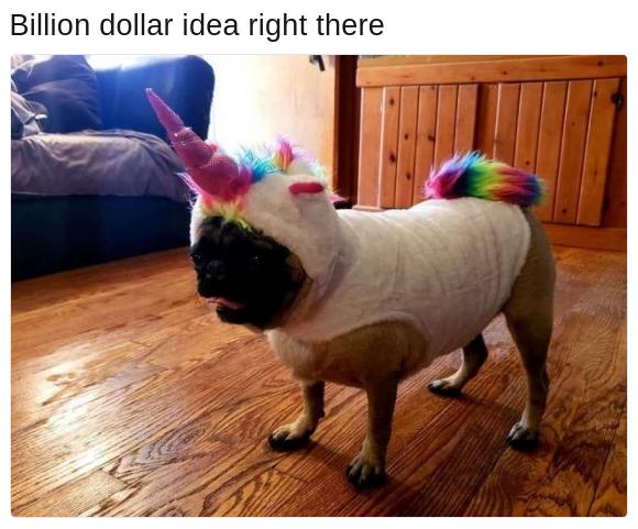 pug life unicorn costume dog meme
