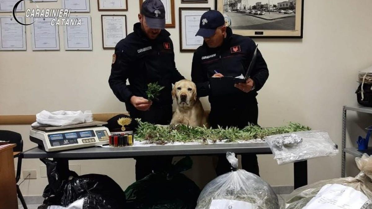 Carabinieri scovano marijuana a Mascali