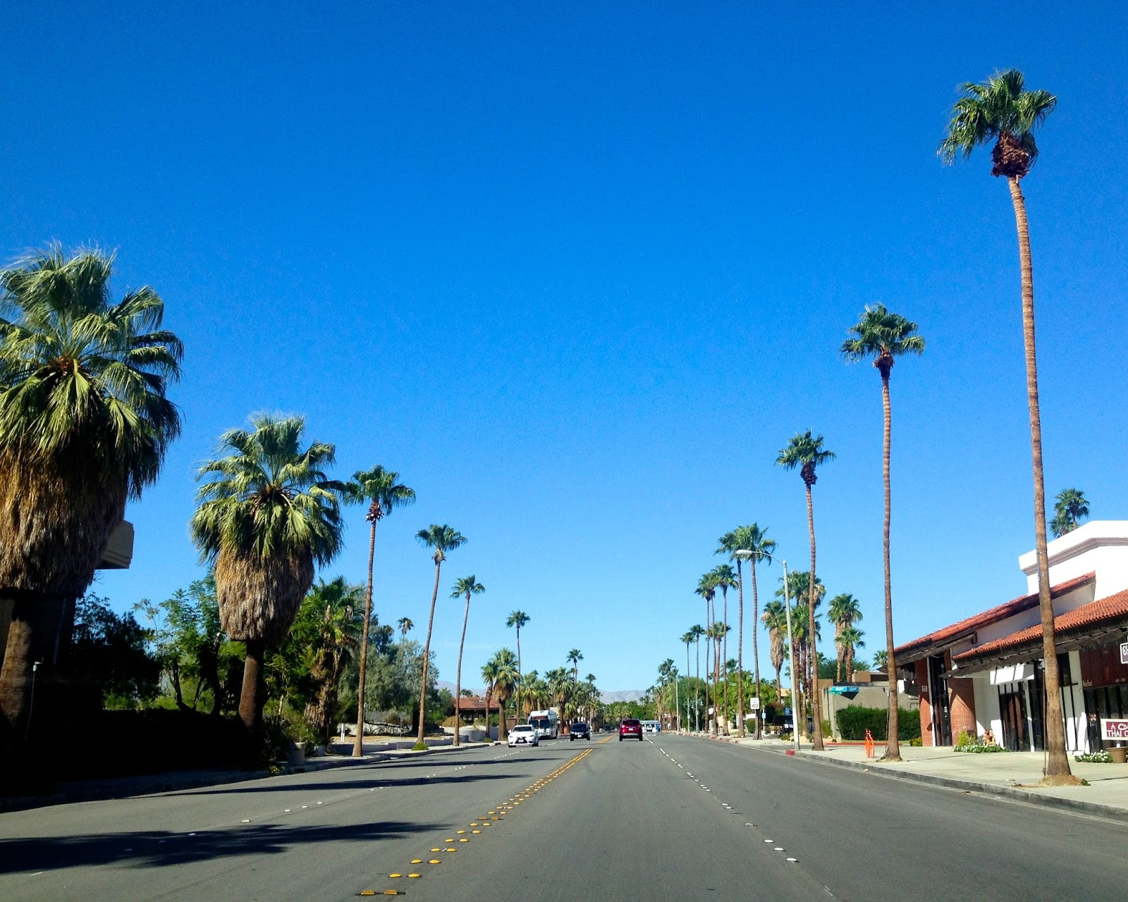 Palm Springs Beach The Best Beaches In World
