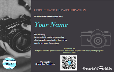 Proverbs World.in, certificate