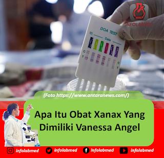 Apa Itu Obat Xanax Yang Dimiliki Vanessa Angel