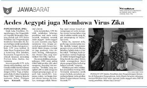 Aedes aegypti juga Membawa Virus Zika