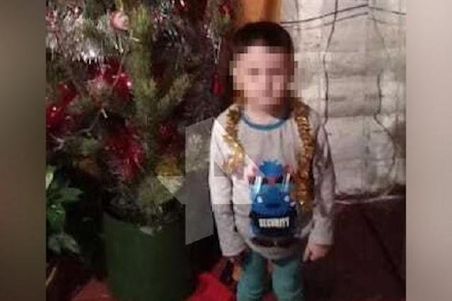 В Башкирии бродячие псы насмерть загрызли игравшего возле дома 4-летнего ребёнка