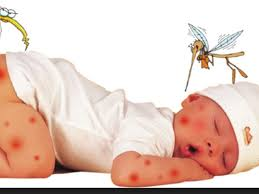 Diệt muỗi tai Hoàng Mai