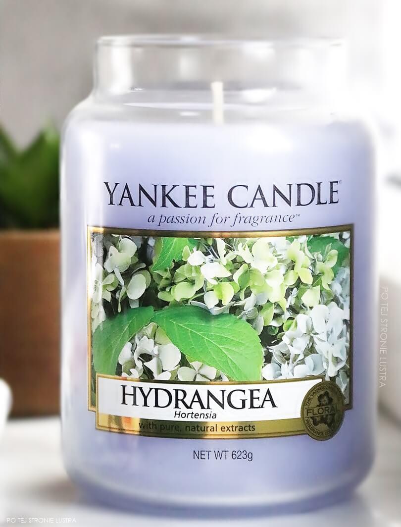 hydrangea yankee candle duża świeca zapachowa