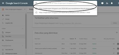menguji url di google console