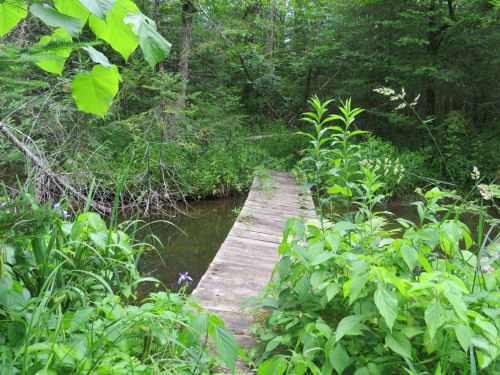 Midland to Mackinac Trail bridge