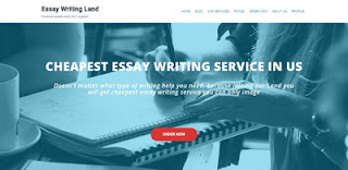 essaywritingland review
