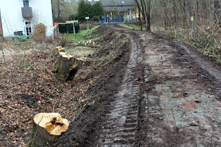 Hochwasserschutz Damm Sanierung Bischleben