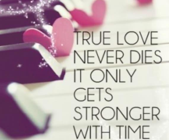Love Status Best, Best Love WhatsApp Status, WhatsApp Status Best Love, Love Status Messages, Beautiful Love Status