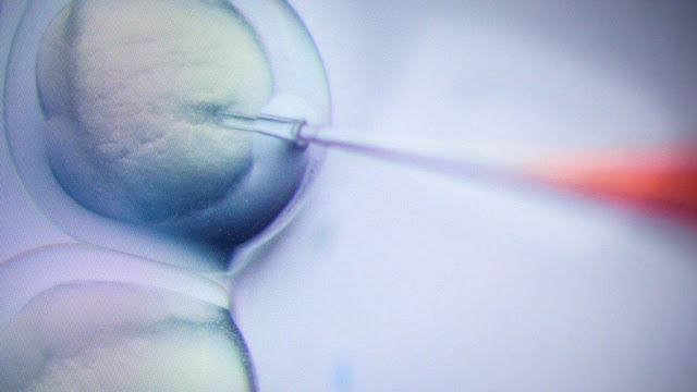 Нові ліки можливо зможуть вилікувати всі види раку, ця терапія вже вбила кожен відомий тип пухлини у мишей