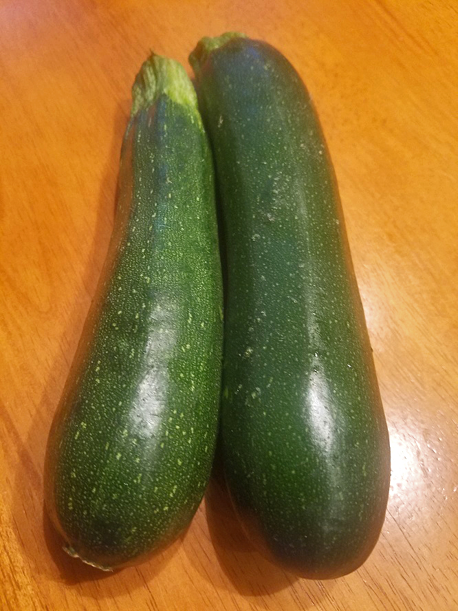 A pair of small zucchini from the garden these are Italian zucchini