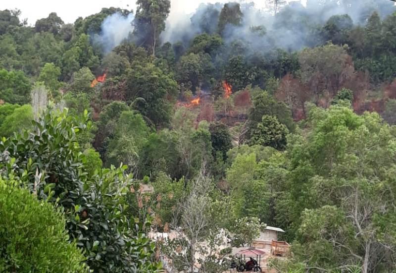 Kebakaran Hutan Terjadi di Area Komplek Pajak Tiban