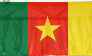 Kidnapped children 78 released, principal and teacher held::: Cameroon