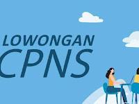 Resmi, Penerimaan CPNS Pemerintah Pusat Daerah 11 November 2019