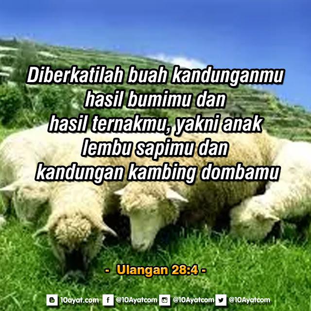 Ulangan 28:4