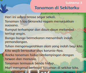 Subtema 3 Tanaman di Sekitarku www.jokowidodo-marufamin.com